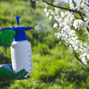 tree pestiside