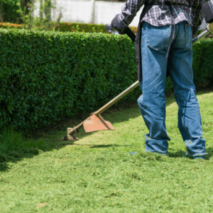 professional weed whacker for commercial property