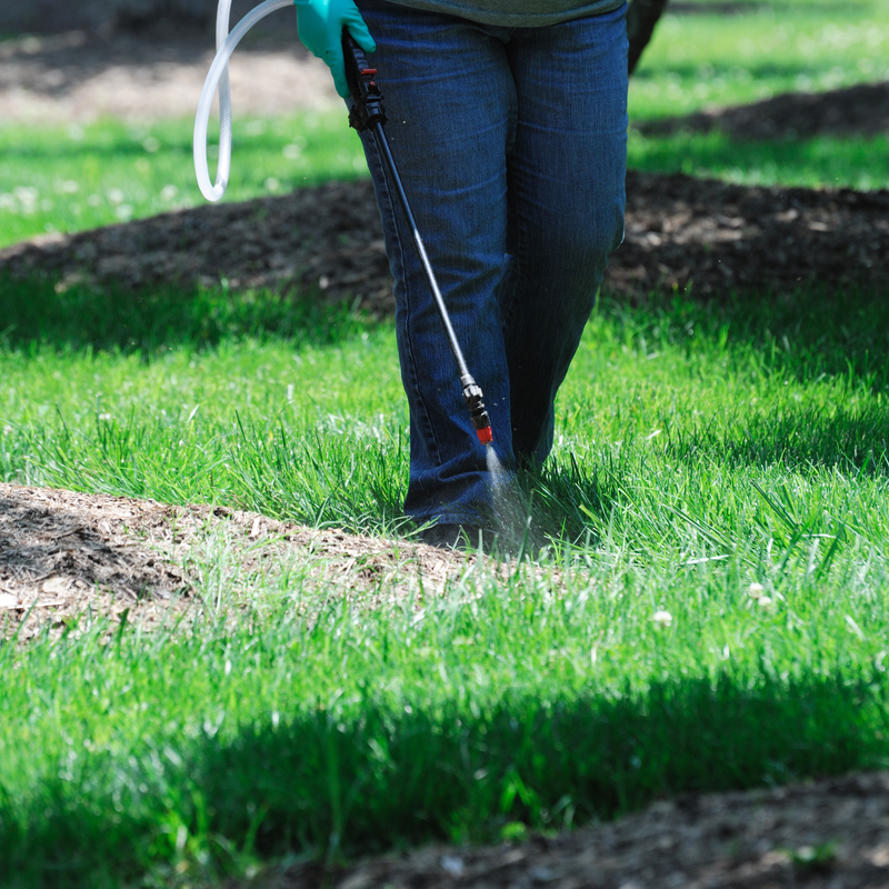 man spaying lawn for pests